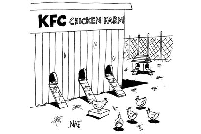 """'We're still looking into it, but we're pretty sure it stands for """"Kind, Friendly, Courteous"""" chicken farm.'"""
