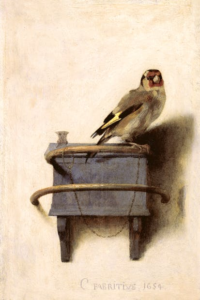 'The Goldfinch', 1654, by Carel Fabritius