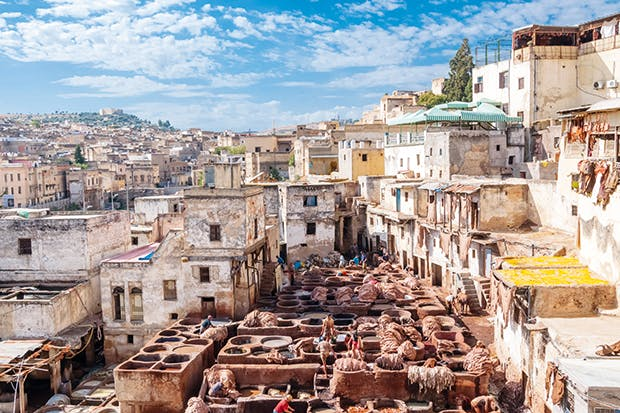 A sniff of the ancient world: Fez's tanneries