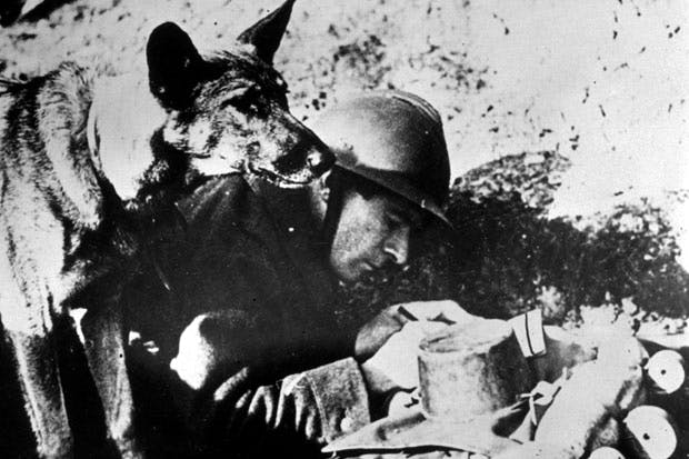 A soldiers best friend (Photo: Getty)