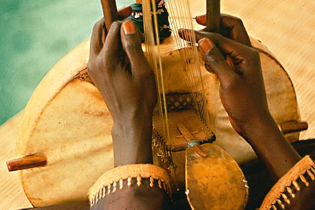 Detail of the bridge of the kora, a harp made from calabash and cow hide, with strings aligned in a perpendicular plane