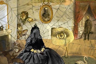 Illustrated by Carolyn Gowdy