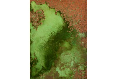 'Untitled (Oxidation Painting)', 1978, by Andy Warhol