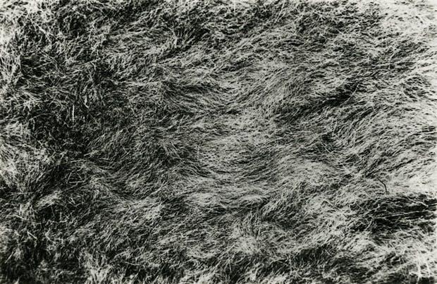 'Grass 1' (1967) by Barry Flanagan