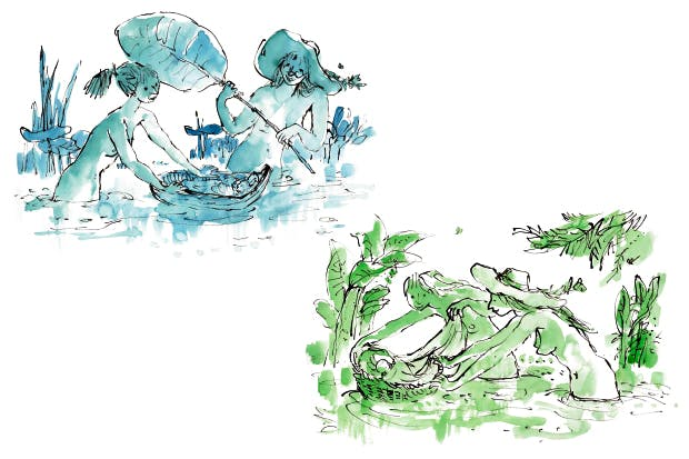 The works by Quentin Blake are from the Neonatal Unit at Angers Maternity Hospital, France (2012).