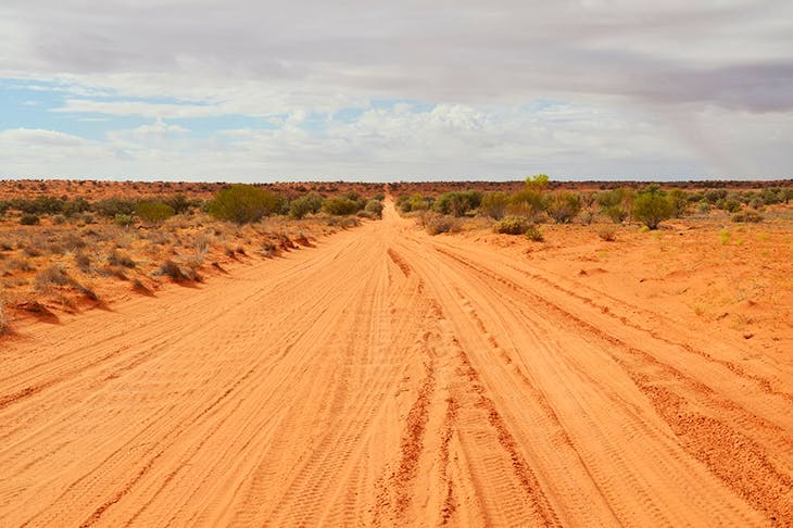 Not everyone's dream: the Simpson Desert, Australia