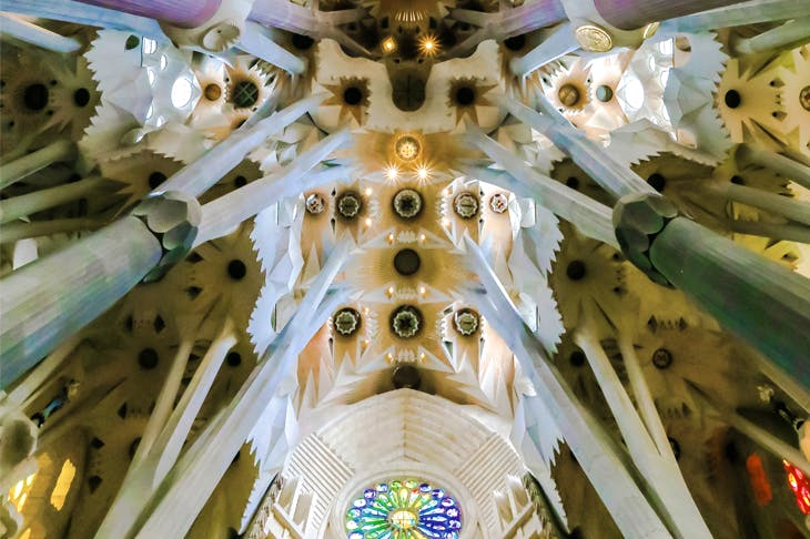Inside the Sagrada Família: Gaudí was fascinated by the shapes of shellfish and pebbles, the branches of trees and light on a spider's web