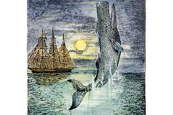 With the all-encompassing model of Moby-Dick behind him, Hoare presents us with a vast and billowing medley of marinaria
