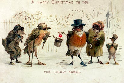 'The Kindly Robin': a Victorian Christmas card portrays the robin as a 'good' bird, despite it being aggressive by nature, and quick to see off intruders