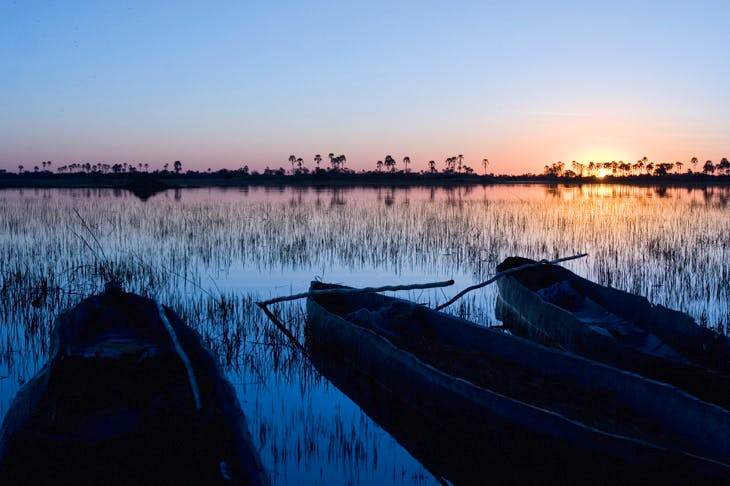 Dawn on the Okavango Delta