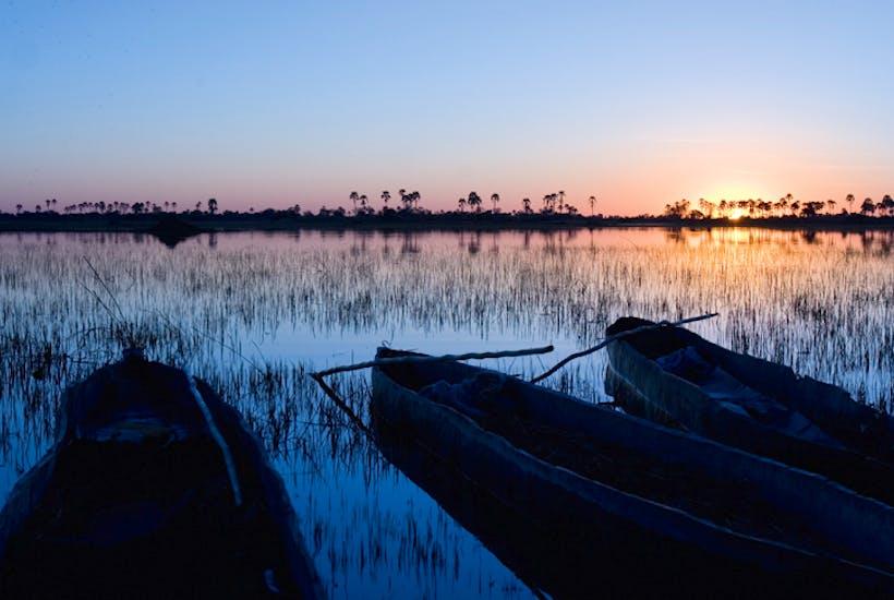 Dawn on the Okavango Delta