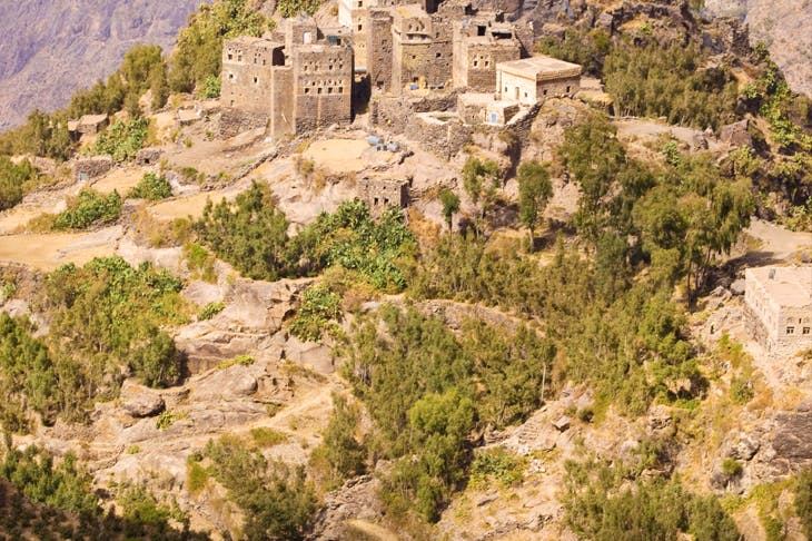 Coffee and khat vie for cultivation in Yemen