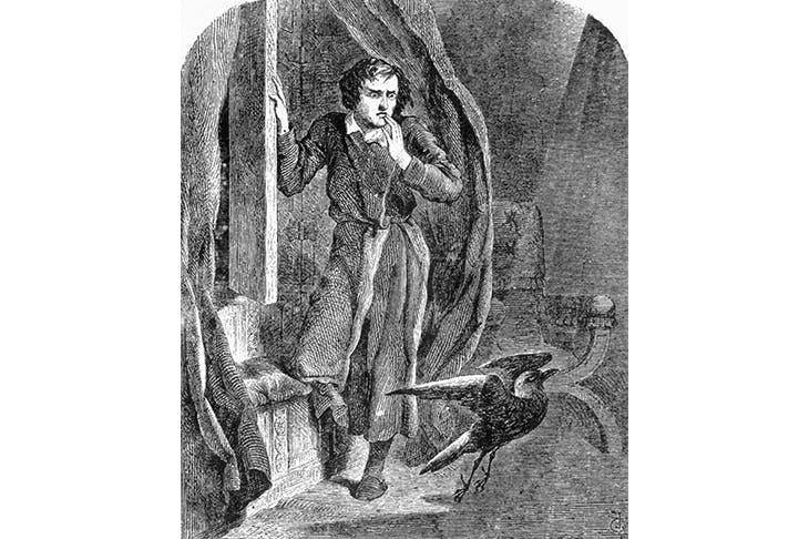 The sinister bird occurs famously in Edgar Allan Poe's poem 'The Raven'