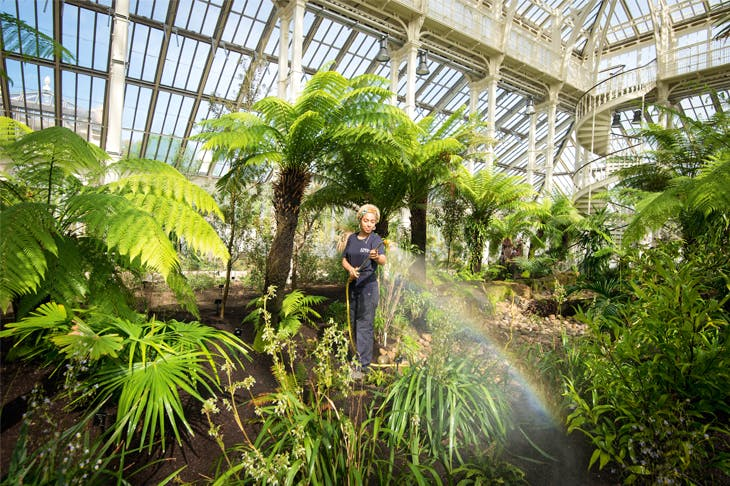 Garden of earthly delights: horticultural apprentice Emma Love in the newly reopened Temperate House at Kew