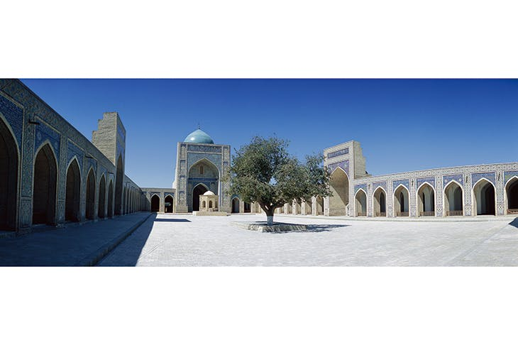 The courtyard of the Kalyan Mosque in Bukhara, Uzbekistan, completed in 1514. A mulberry tree stands in the middle. (From The History of Central Asia)