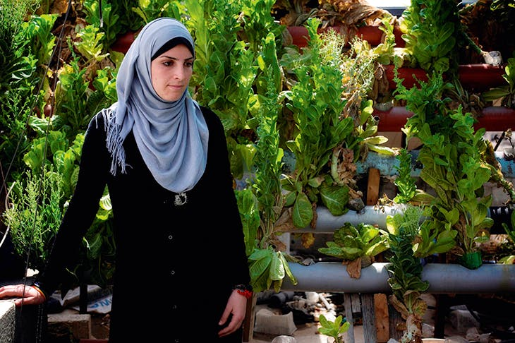 'I feel free up here', says Esra Ahmad in her father's hydroponic rooftop garden in Gaza