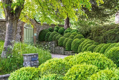 A river of green topiary cascades down the terrace steps at West Dean. Cotoneaster horizontalis covers the wall on the right