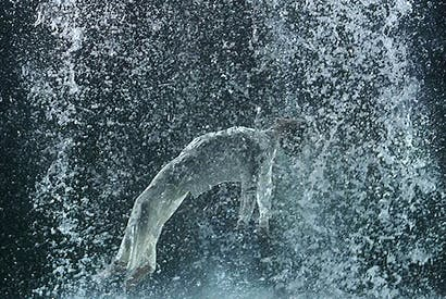 'Tristan's Ascension', 2005, by Bill Viola