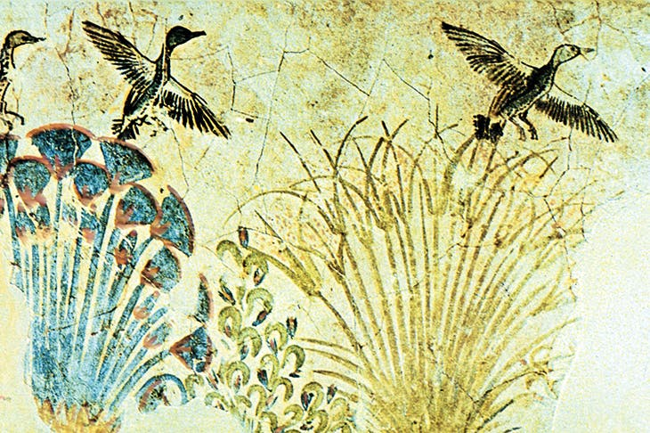 Wall painting of waterfowl flying out of the reeds, with papyrus on the left. From the tomb of Akhenaten, c. 1375 BC