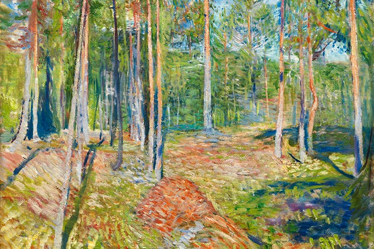 Into the woods: for the Oslo exhibition, Knausgaard chose to fill a whole section with Munch's paintings of trees. 'Pine Forest' (1891–92)