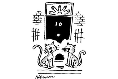 'With Boris, is it nine lives or nine wives?'