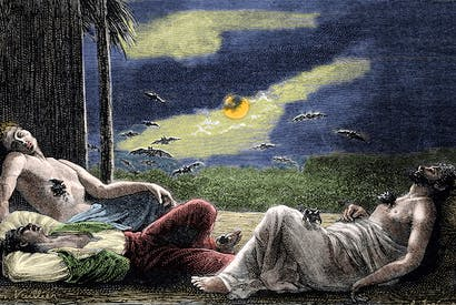 Vampire bats, like succubi, prey on sleeping men at full moon in a 19th-century engraving