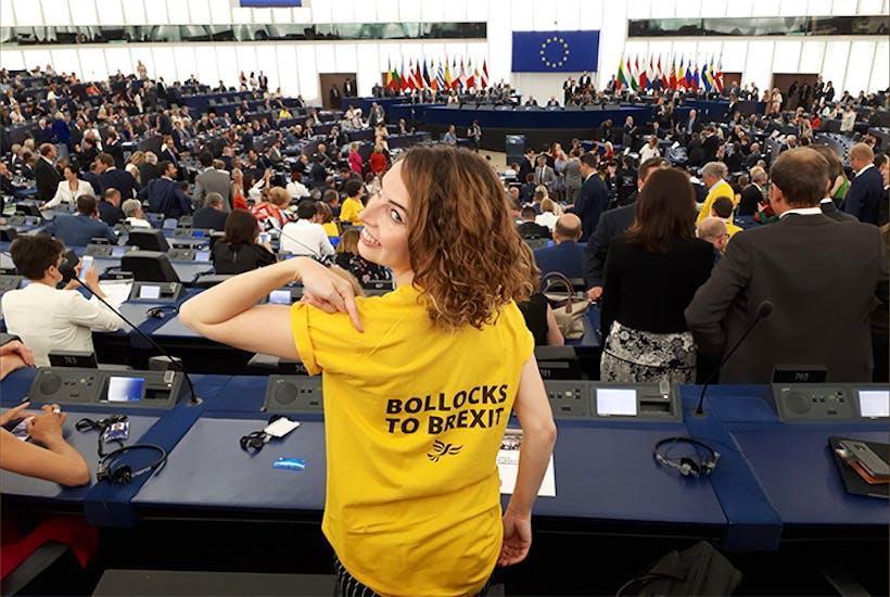 Lib Dem MEP Luisa Porritt in the European Parliament last week (Twitter)