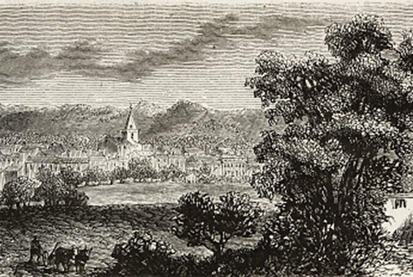 Within 24 hours of my positive diagnosis I was back with Catriona in beautiful Brignoles (illustration, 1873)