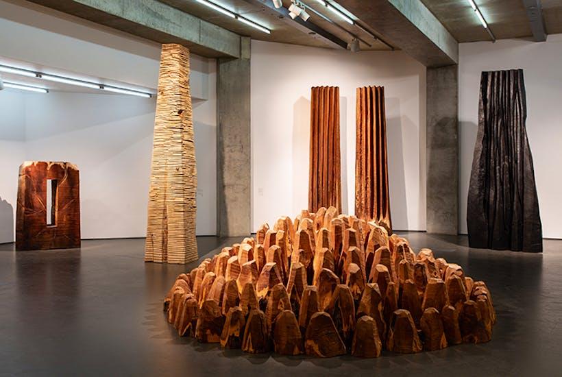 Inspiring and sweet-smelling: David Nash's 200 Seasons at Towner Art Gallery